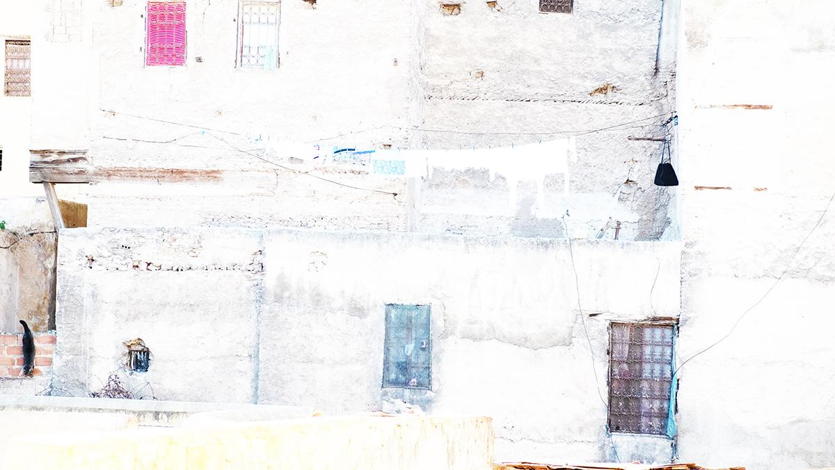 Hauswandstruktur mit Katze – Suse Güllert