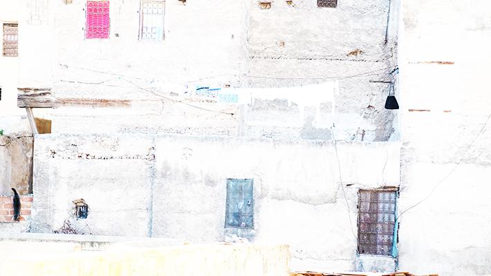 Hauswand-Struktur mit Katze – Suse Güllert Fotografie